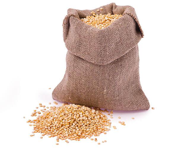 Saco lleno de la más fresca Quinoa para los productos de Bocali.